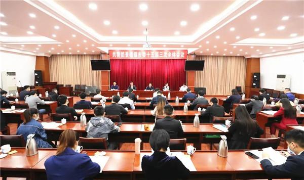 共青团景德镇市委十五届三次全体会议召开