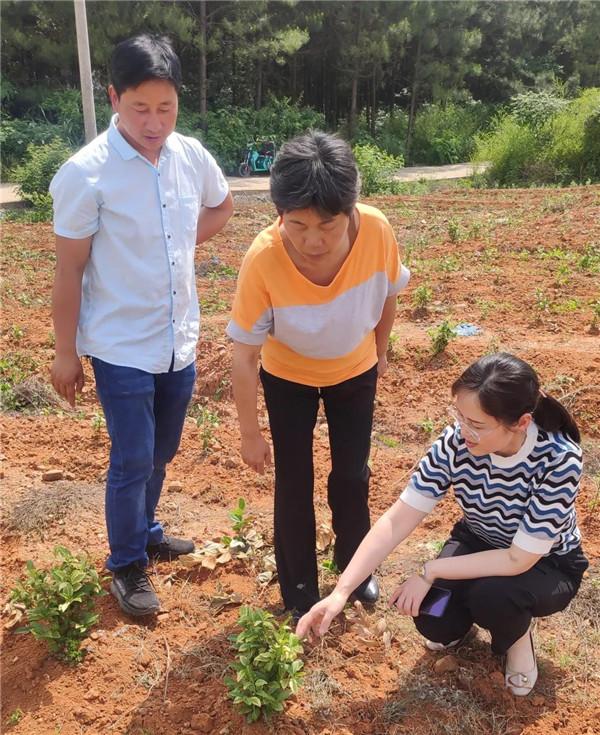 团市委在定点帮扶贫困村开展科技扶贫工作